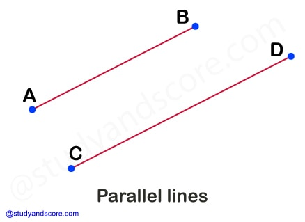 horizontal line, vertical line, skew line, intersecting line, transversal line, straight line, derivatives of straight line, oblique line, curved line, parallel line, perpendicular line