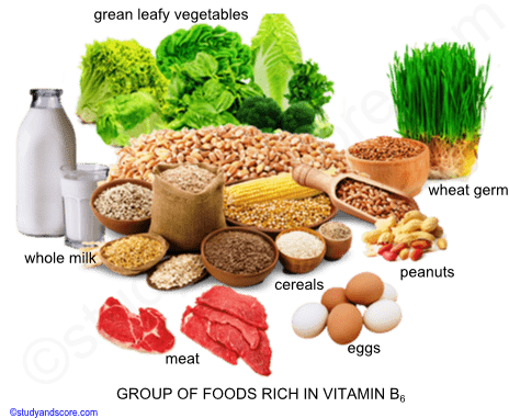 Vitamin B6, Sources, Deficiency, Function, absorption