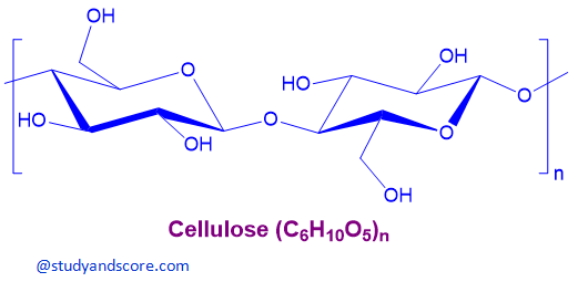 cellulose, chemicals of cell wall, chemical structure of cellulose