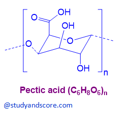 pectic acid, chemicals of cell wall, chemical structure of pectic acid