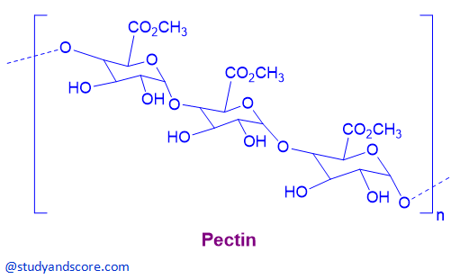 pectin, chemicals of cell wall, chemical structure of pectin