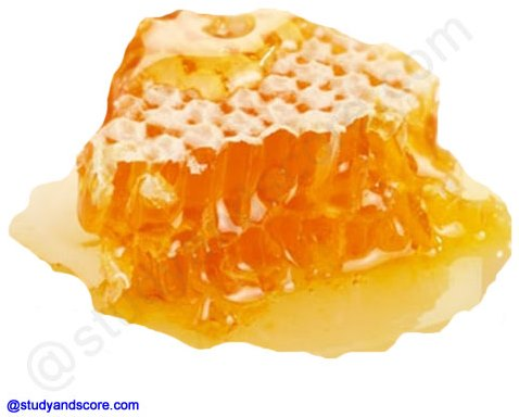 honey, honey comb, products from bee hive, honey bee, commercial production of honey