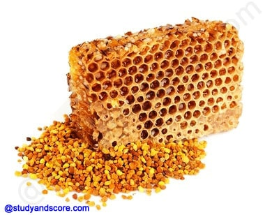 honey bee, bee wax, commercial production of honey, products of bee hive