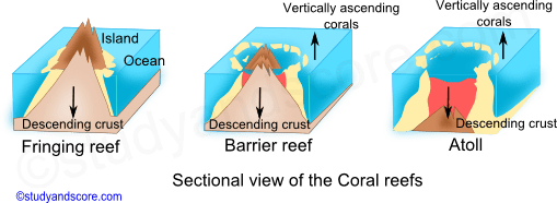 coral reef, fringing reef, barrier reef, atoll, ocean, corals, phylum cnidaria