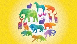 Zoology masters, Zoology animal kingdom, zoology optional, zoology project, zoology study, zoology online course, zoology botany
